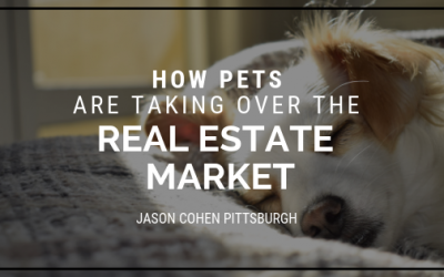 How Pets Are Taking Over the Real Estate Market